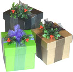 Example of Christmas packages