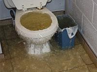 toilet-backup